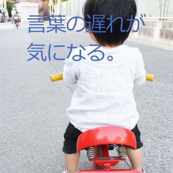 会話が苦手な発達障害や自閉症の子供が言葉や会話でのコミュニケーションを「見て学べる」フラッシュカードDVD「言語訓練(ST)後編12巻」です。|iqgakuen|02