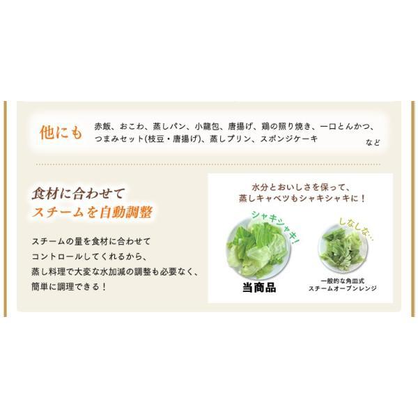 電子レンジ アイリスオーヤマ シンプル フラット スチームオーブンレンジ インバーター式  ヘルシー脂 油 グリル 1000W 250℃ MS-2402|irisplaza|06