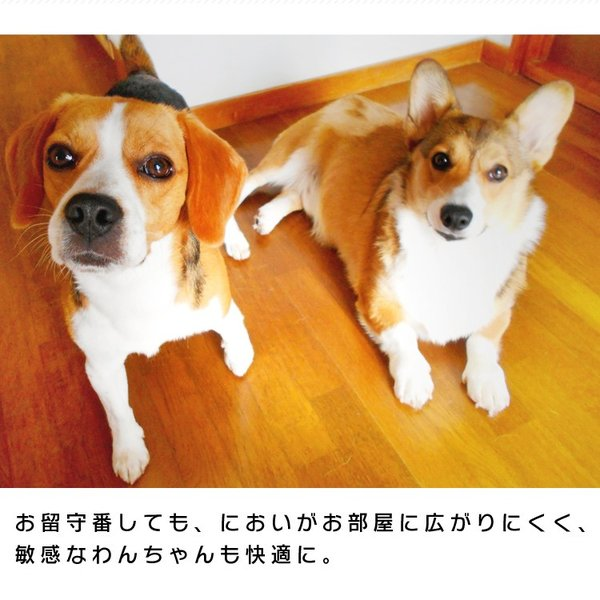 ペットシーツ アイリスオーヤマ レギュラー 厚型 400枚 業務用 ネット限定 安い 送料無料 犬|irisplaza|11