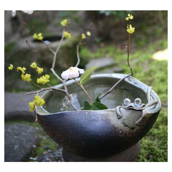 金魚鉢 おしゃれ 睡蓮鉢 陶器 メダカ鉢 水鉢 信楽焼 蛙付めだか鉢 信楽焼