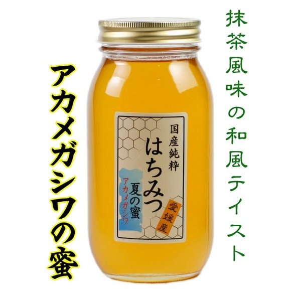 はちみつ 国産はちみつ 蜂蜜 ハチミツ 愛媛県産 アカメガシワの蜜(単花蜜) 1Kg|iroha-beebeey