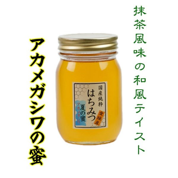 はちみつ 国産はちみつ 蜂蜜 ハチミツ 愛媛県産 アカメガシワの蜜(単花蜜) 500g|iroha-beebeey