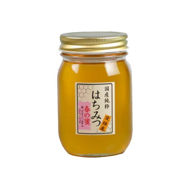 はちみつ 国産はちみつ 蜂蜜 ハチミツ 愛媛県産 春の蜜(百花蜜) 500g|iroha-beebeey|02