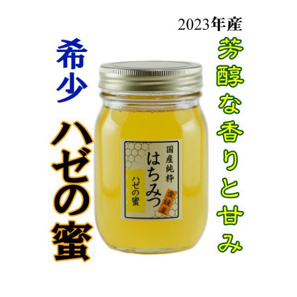 はちみつ 国産はちみつ 蜂蜜 ハチミツ 愛媛県産 ハゼの蜜(単花蜜) 500g iroha-beebeey