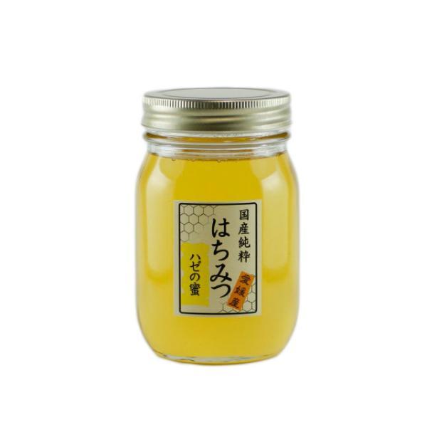 はちみつ 国産はちみつ 蜂蜜 ハチミツ 愛媛県産 ハゼの蜜(単花蜜) 500g iroha-beebeey 02