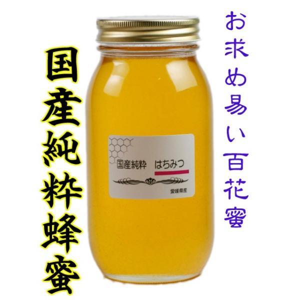国産純粋はちみつ 1000g はちみつ ハチミツ 蜂蜜 国産蜂蜜 国産ハチミツ 愛媛産 1Kg