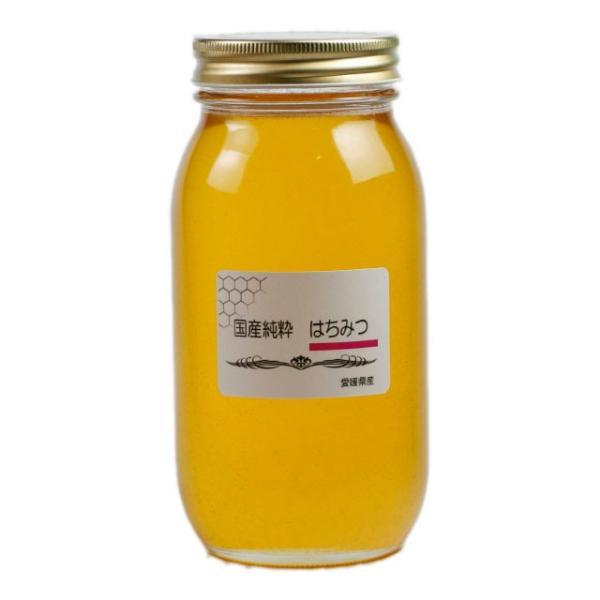 国産純粋はちみつ 1000g はちみつ ハチミツ 蜂蜜 国産蜂蜜 国産ハチミツ 愛媛産 1Kg|iroha-beebeey|02