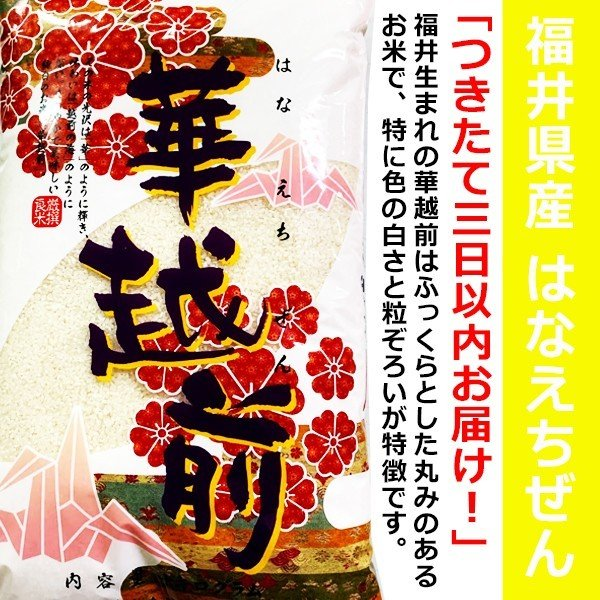 新米 華越前 福井県産100% 10kg 袋 (はなえちぜん) つきたて三日以内お届け! 米 / お米 / 10キロ / ハナエチゼン