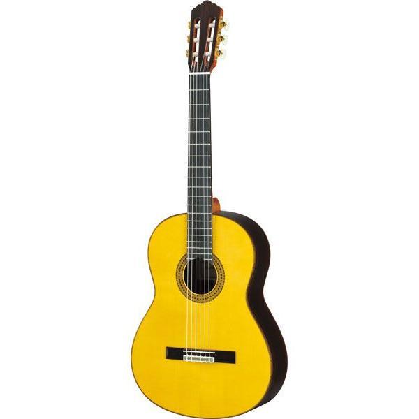 YAMAHA / GC22S クラシックギター (セミハードケースつき!!)(YRK) ishibashi