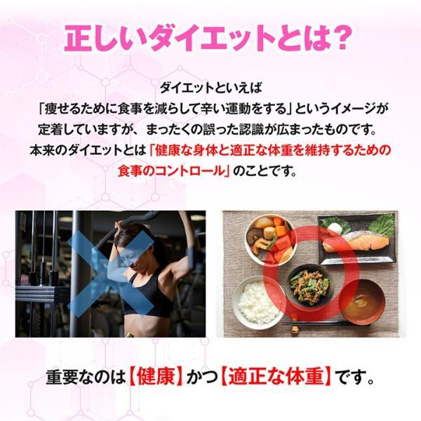BMSシリーズ アミノ酸 サプリ オルニチン BMS ダイエットサポート 180粒 約30日分 魔裟斗愛用【美BODY】|ishokudogen-store|04
