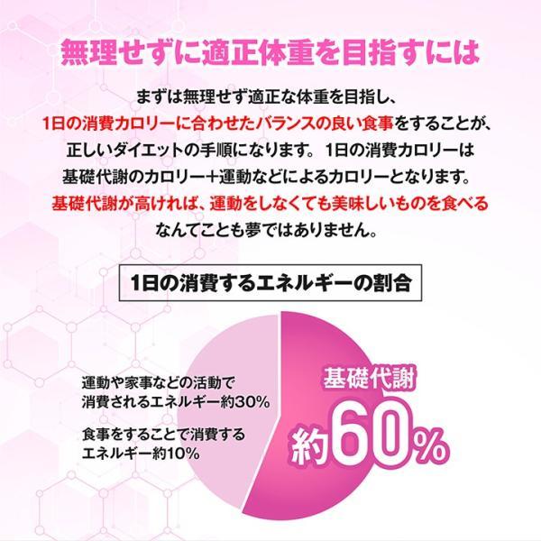 BMSシリーズ アミノ酸 サプリ オルニチン BMS ダイエットサポート 180粒 約30日分 魔裟斗愛用【美BODY】|ishokudogen-store|06