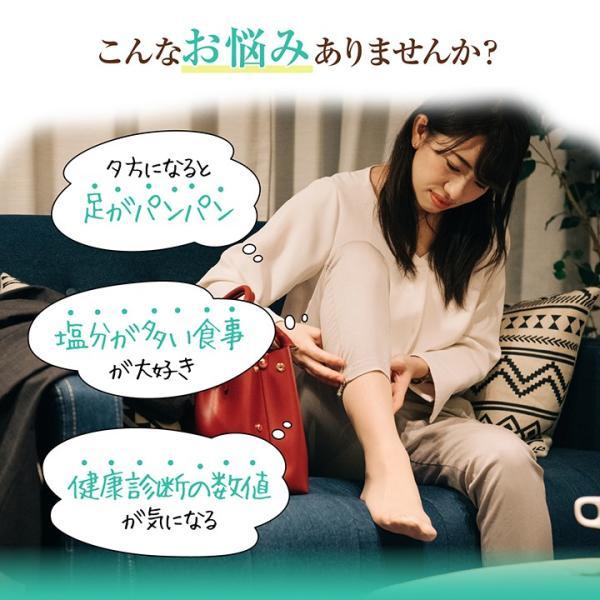 《管理栄養士監修》 ミネラルサポート サプリ カリウム 90粒 30日分|ishokudogen-store|02