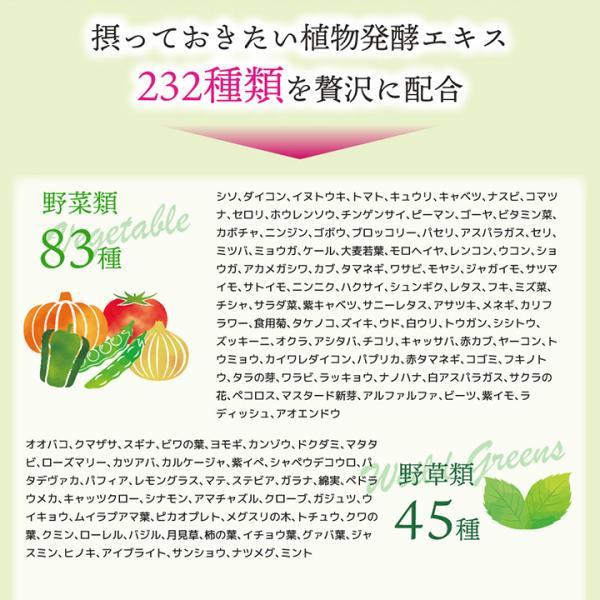 【232酵素シリーズ】 酵素 サプリ 爽快酵素 120粒 30日分 2袋 ダイエット サプリ 美容 野菜 果物 ビフィズス菌|ishokudogen-store|05