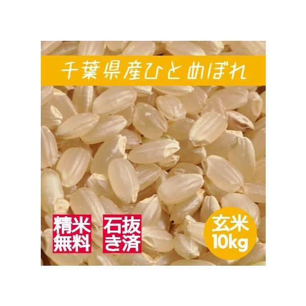 新米 米 玄米 10kg ひとめぼれ 令和3年産 綺麗仕上 本州四国 送料無料 精米無料 紙袋
