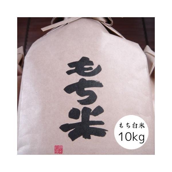 米 白米 もち米 10kg 本州四国 送料無料