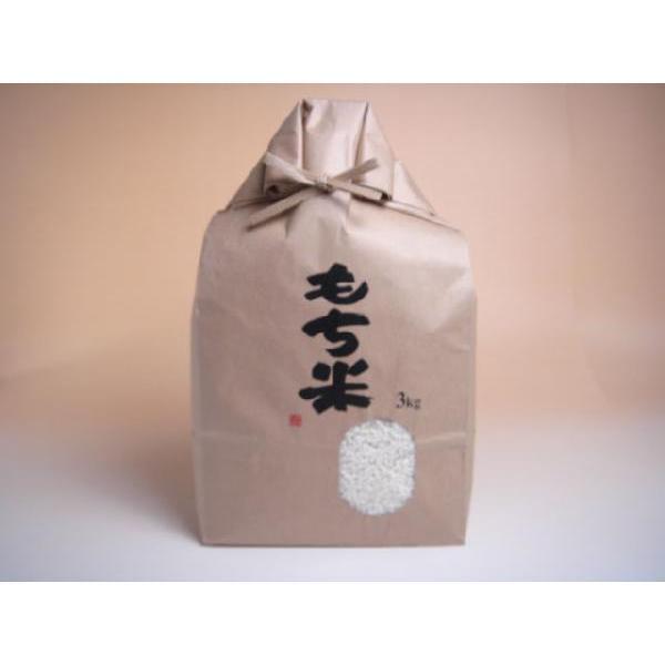 米 白米 もち米 3kg 本州四国 送料無料