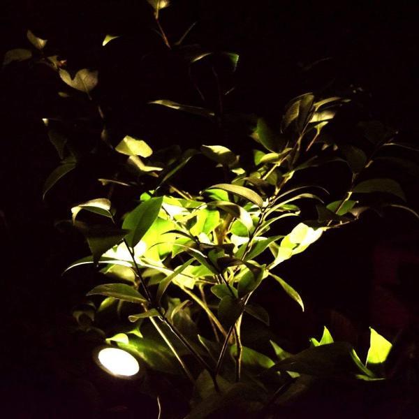 送料無料 ガーデンライト 2LEDセット ソーラーライト 屋外 スポットライト 水中ライト LED 防水 2LEDセット 防犯|isozaki-store|02