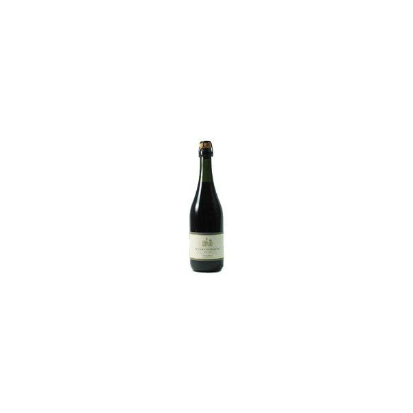 スパークリングワイン ランブルスコ (本体価格2,500円)|ispecial|04
