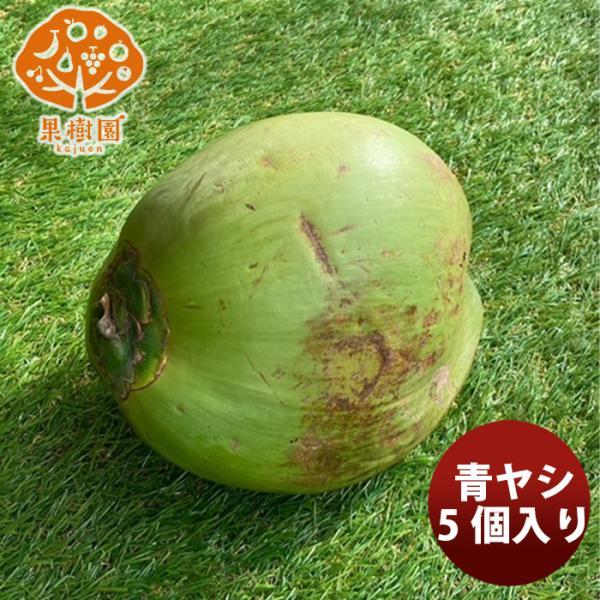 松孝 青ヤシ 5個入  新発売果樹園 フレッシュフルーツ 輸入 ココナッツ グリーンココナッツ のし・ギフト・サンプル各種対応不可