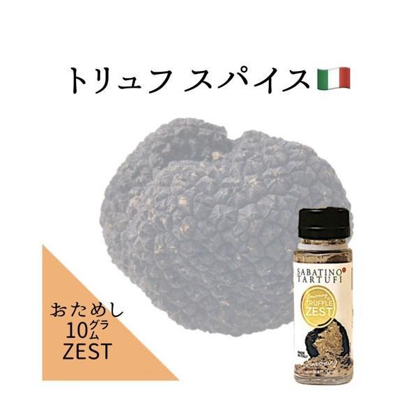スパイス トリュフゼスト お試しサイズ 10g ポイント消化 サバティーノ社 イタリア産|italiatanicha2