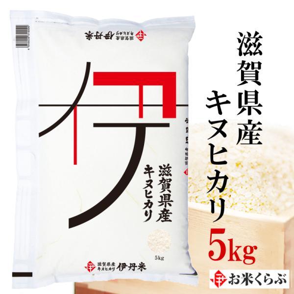 お米 5kg 送料無料 白米 令和2年産 滋賀県産キヌヒカリ 5kg 伊丹米 ギフト 敬老の日 熨斗承ります きぬひかり
