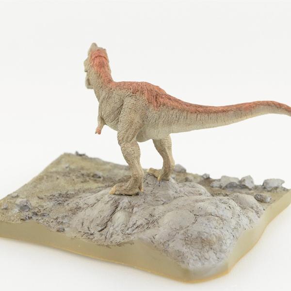 リアルシリーズ ティラノサウルス/Tyrannosaurus|itempost|06