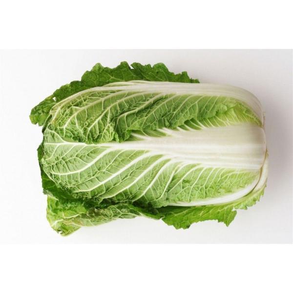 黄芯白菜(はくさい) 約1.5kg 福岡産