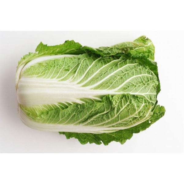 白菜(はくさい)福岡産九州産