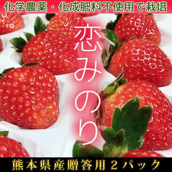 有機イチゴ贈答用2パック入り 恋みのり 熊本県産|itofarm