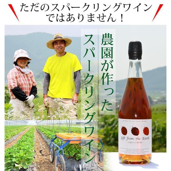 いちごスパークリングワイン 農薬不使用、肥料不使用で栽培したイチゴで作ったスパークリングワイン1本【簡易包装用】|itofarm|02