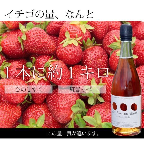 いちごスパークリングワイン 農薬不使用、肥料不使用で栽培したイチゴで作ったスパークリングワイン1本【簡易包装用】|itofarm|04