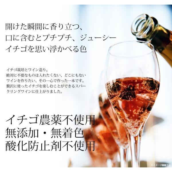 いちごスパークリングワイン 農薬不使用、肥料不使用で栽培したイチゴで作ったスパークリングワイン1本【簡易包装用】|itofarm|05