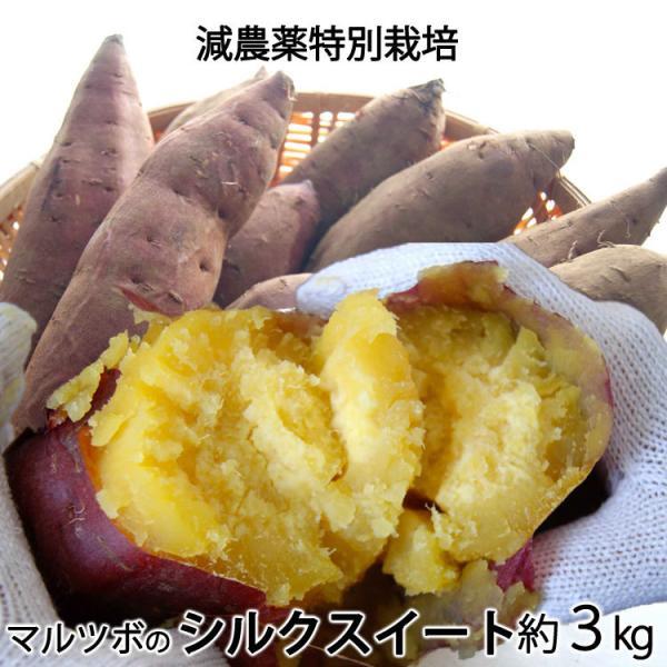 マルツボの甘藷「シルクスイート」減農薬栽培 茨城県産 大小混在約3kg*常温便 *送料込