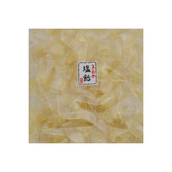 塩飴(塩あめ)1kg業務用キャンディ(送料無料・熱中症対策飴)