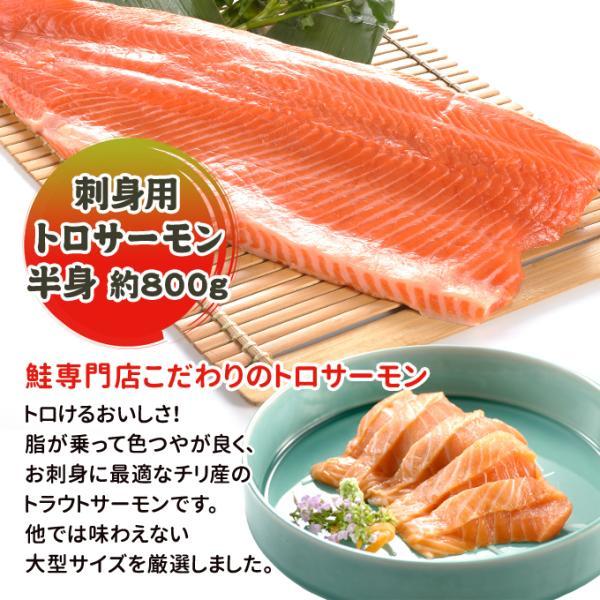 トロサーモン 半身 約1kg 刺身用 送料別|iwamatsu-salmon|02