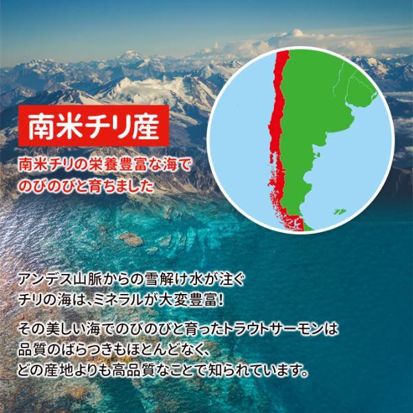 トロサーモン 半身 約1kg 刺身用 送料別|iwamatsu-salmon|04