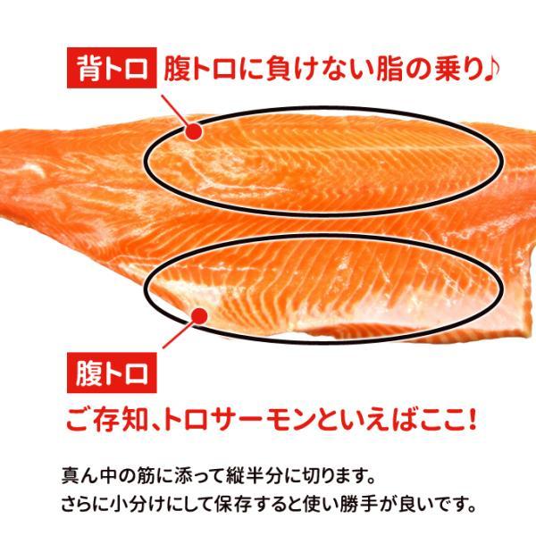 トロサーモン 半身 約1kg 刺身用 送料別|iwamatsu-salmon|05