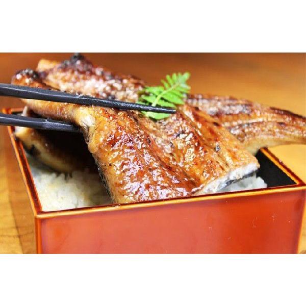 訳ありうなぎ メガ盛り1kg 福袋  国産  送料無料 あすつく|iwamatsu-salmon|02