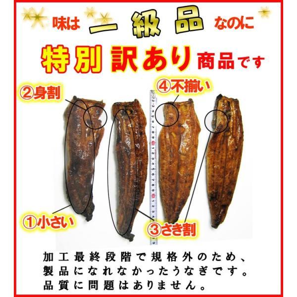 訳ありうなぎ メガ盛り1kg 福袋  国産  送料無料 あすつく|iwamatsu-salmon|04