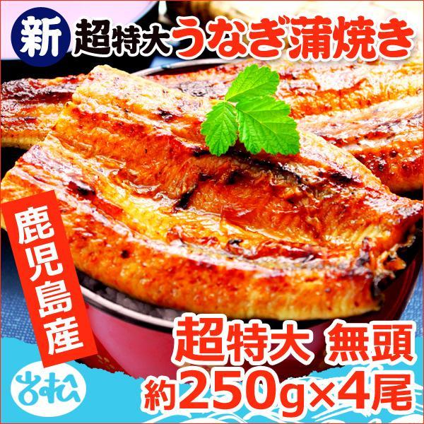 うなぎ 蒲焼 国産 送料無料 超 特大 約250g 4尾 メガサイズ ふっくら やわらか 国内産 土用 丑の日  ギフト プレゼント あすつく|iwamatsu-salmon