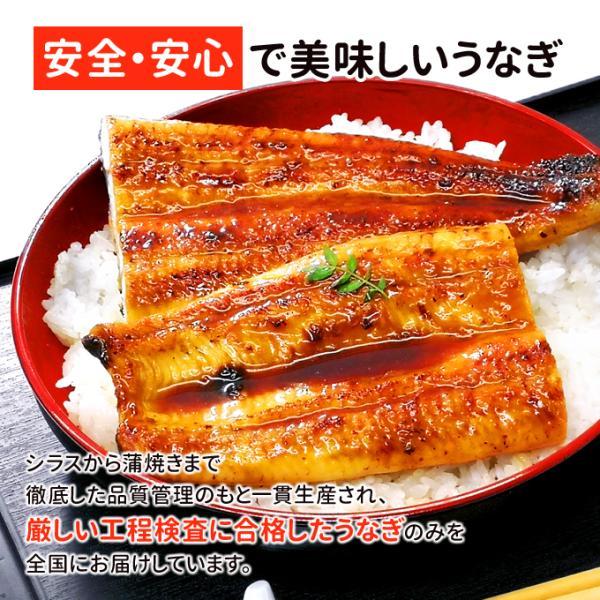 うなぎ 蒲焼 国産 送料無料 超 特大 約250g 4尾 メガサイズ ふっくら やわらか 国内産 土用 丑の日  ギフト プレゼント あすつく|iwamatsu-salmon|07