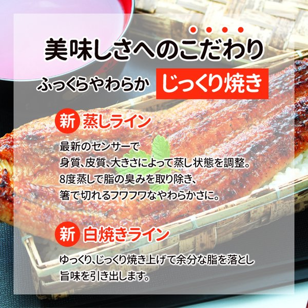 うなぎ 蒲焼 国産 送料無料 超 特大 約250g 4尾 メガサイズ ふっくら やわらか 国内産 土用 丑の日  ギフト プレゼント あすつく|iwamatsu-salmon|08