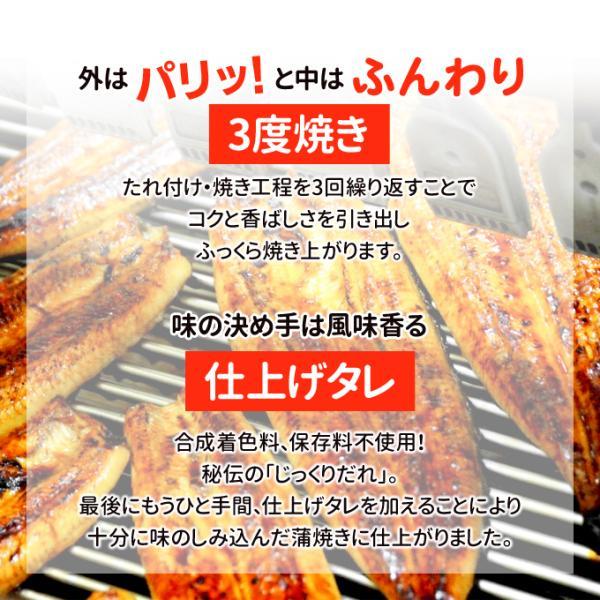 うなぎ 蒲焼 国産 送料無料 超 特大 約250g 4尾 メガサイズ ふっくら やわらか 国内産 土用 丑の日  ギフト プレゼント あすつく|iwamatsu-salmon|09