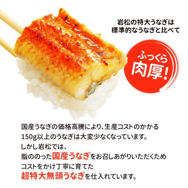 うなぎ 蒲焼 国産 送料無料 超 特大 約250g 4尾 メガサイズ ふっくら やわらか 国内産 土用 丑の日  ギフト プレゼント あすつく|iwamatsu-salmon|10
