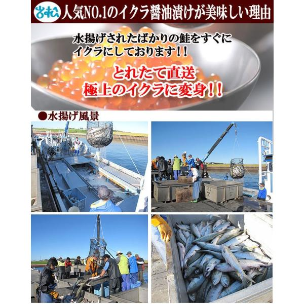 いくら醤油漬け200g×2パック 北海道産 送料無料|iwamatsu-salmon|05