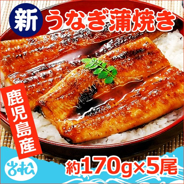 鹿児島産 特大うなぎ蒲焼き 約170g×5尾 送料無料