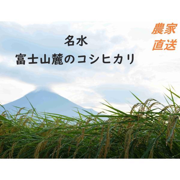 新米 令和3年 富士山コシヒカリ20kg 単一原料米 農家直送 (20キロ) 白米  米  こしひかり 静岡産 農家直送
