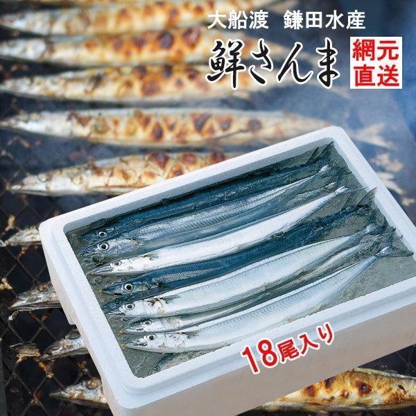 三陸 大船渡 生サンマを直送 鎌田水産 鮮さんま 18尾 K13