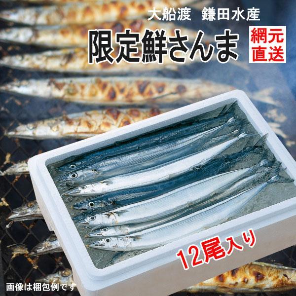 三陸 大船渡 生サンマを直送 鎌田水産 大型鮮さんま 12尾 K15