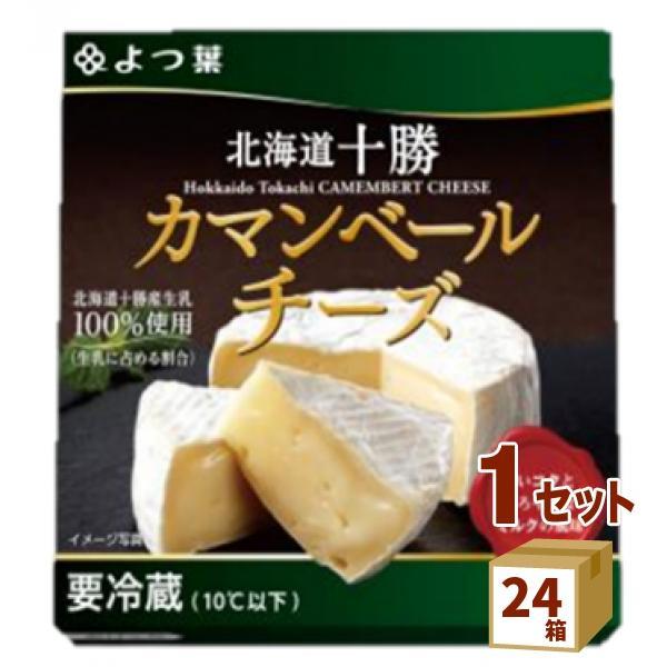 よつ葉 北海道十勝100 カマンベールチーズ  100g×24箱
